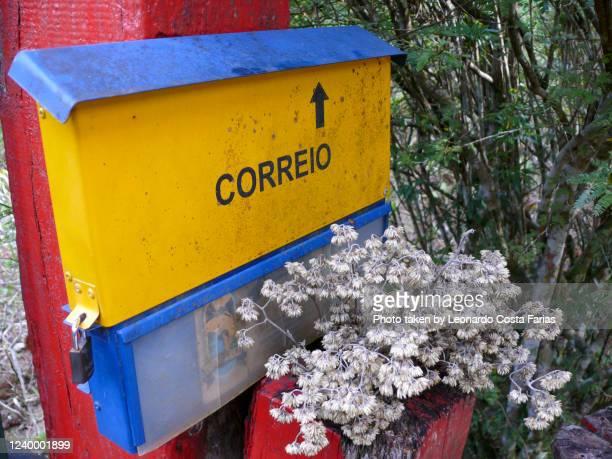 the flowered mailbox - leonardo costa farias - fotografias e filmes do acervo