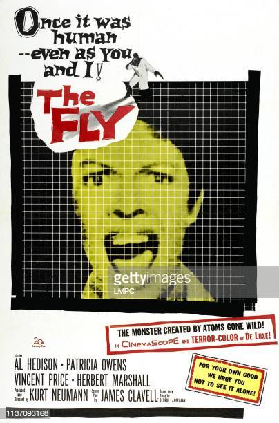 The Fly poster David Hedison top Patricia Owens 1958