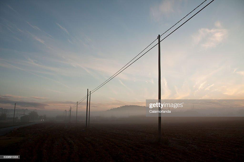 The fog : Foto stock