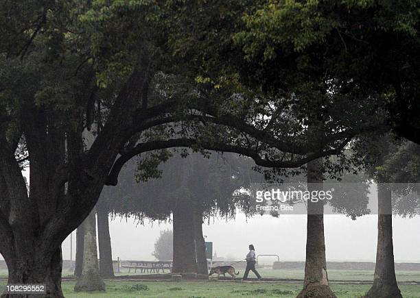 The fog settles over Kearney Park Monday afternoon January 24 2011 in Fresno California The National Weather Service issued a dense fog warning for...