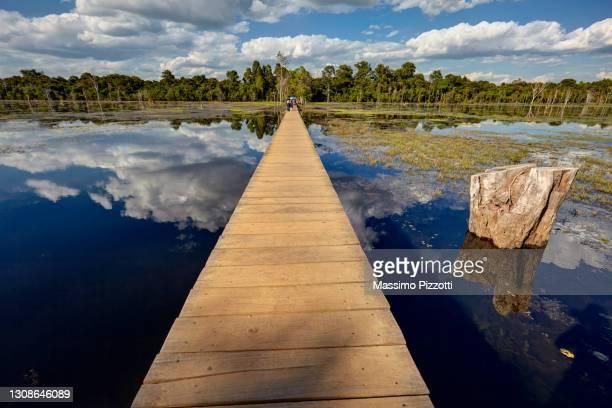 the footbridge to neak pean temple - massimo pizzotti foto e immagini stock