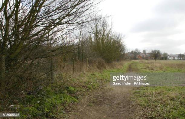 The footpath close to houses in Redhill Surrey where a 30 year old woman was raped July 11 2002 The serial rapist Antoni Imiela was today found...