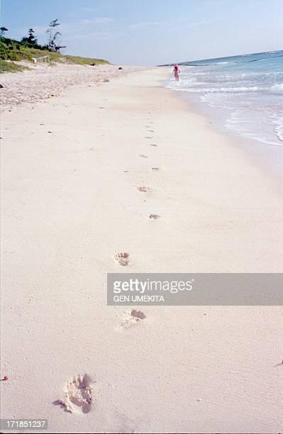 The footprint of the girl who runs the beach