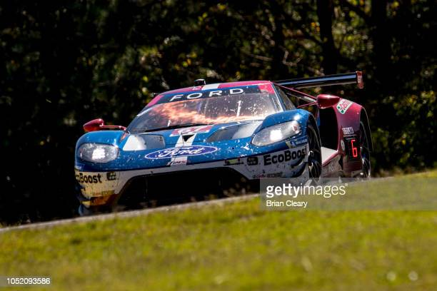 The Ford GT of Richard Westbrook of Great Britain Ryan Briscoe of Austraia and Scott Dixon of New Zealand races on the track during the Petit Le Mans...
