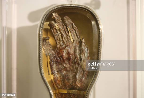 The forearm of Saint Francis Xavier a popular saint revered by Catholics worldwide was on display at St Michaels Cathedral Basilica in Toronto...