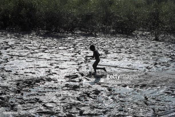 The Forgotten Of The Gange Delta En Inde en novembre 2003 dans le delta du Gange parmi les populations peuplant les îlots de l'archipel des...