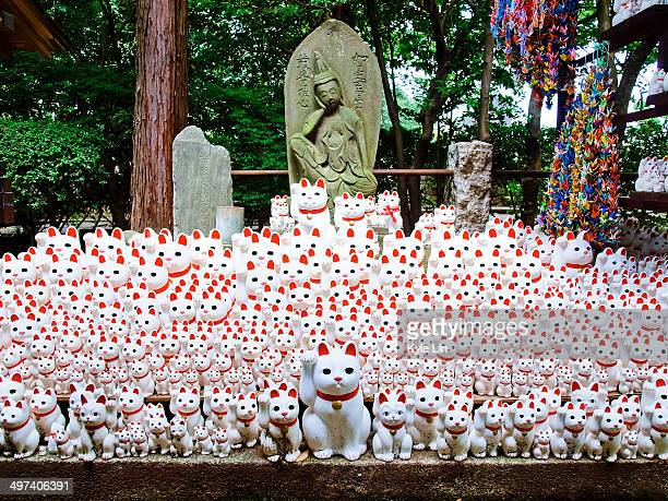 the fortune cat - maneki neko stock photos and pictures