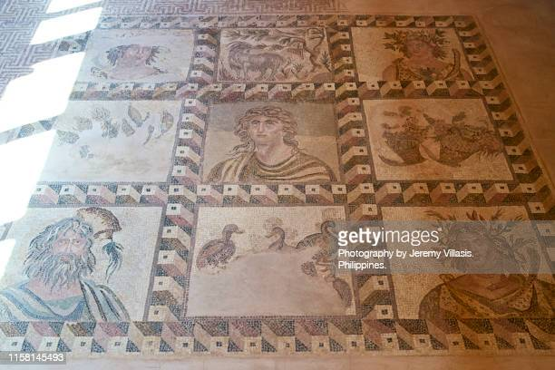 the four seasons mosaic, paphos archaeological park - パフォス考古学公園 ストックフォトと画像