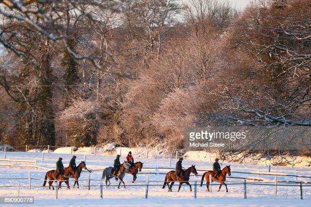 The fourth lot head towards the top of the polytrack in heavy snow conditions during the morning gallops at the yard of national hunt trainer Nigel...