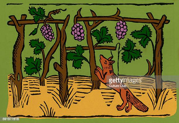 The Fox and Grapes from Caxton's 'Aesop' In this fable the fox covets grapes which he cannot have ultimately coming to disdain them Illustration...