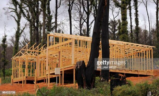 The frame of a new house is shown surrounded by burnt trees nearly one year after the Black Saturday bushfires in Marysville on February 4 2010...