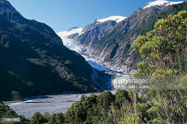 The Franz Josef Glacier from Sentinel Rock Walk Westland National Park West Coast South Island New Zealand
