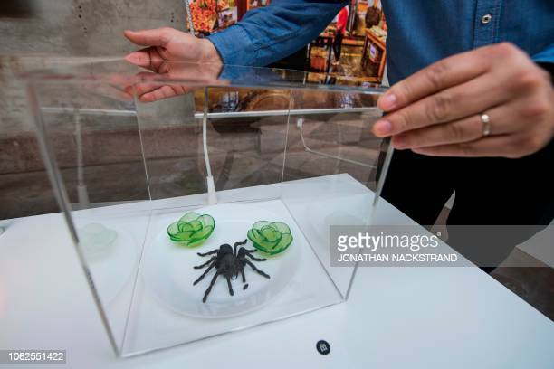 The Fried Tarantula from Cambodia is on view at the Disgusting Food Museum in Malmo on November 7 2018 Cheese teeming with squirming maggots sheep's...