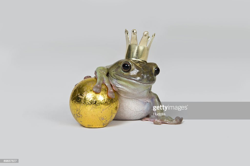 The frog prince and gold ball, studio shot : Stock Photo