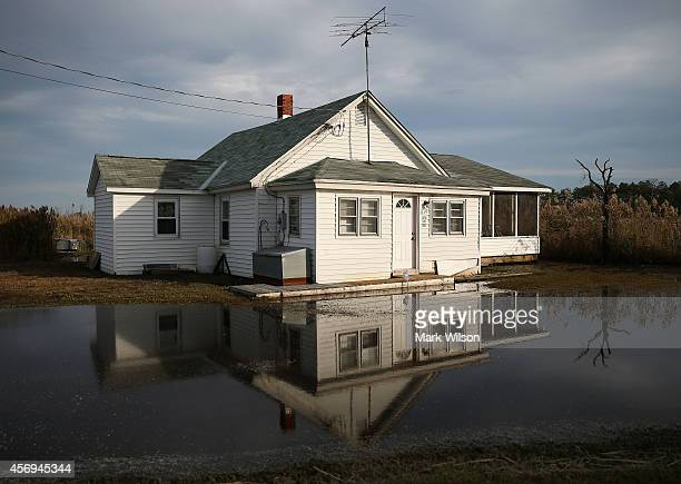 The front yard of a vacant home is flooded from rising ground water October 9 2014 in Robbins Maryland Several islands and property's located at sea...