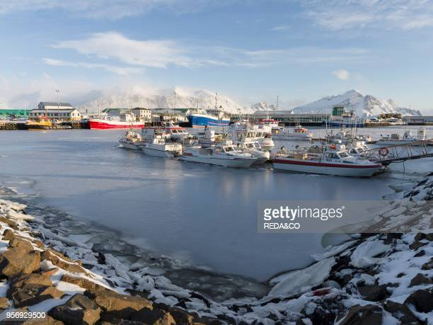 The frozen harbour of the small town Hoefn during winter In the background the mountains of Stokksnes europe northern europe Iceland February