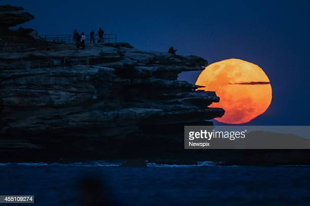 The full supermoon rises over North Bondi headland on September 9 2014 in Sydney Australia A supermoon or harvest moon involves a full moon...