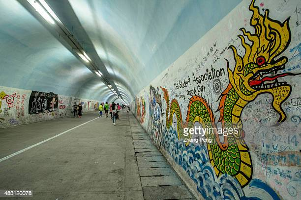 The Furong Tunnel a popular tourist attraction in Xiamen University famous for the beautiful doodles drawn on the walls by the universitys creative...
