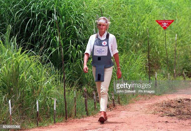 CROSS 11/07/03 The future of the Diana Princess of Wales Memorial Fund set up after her death is under threat It has frozen all its grants to...