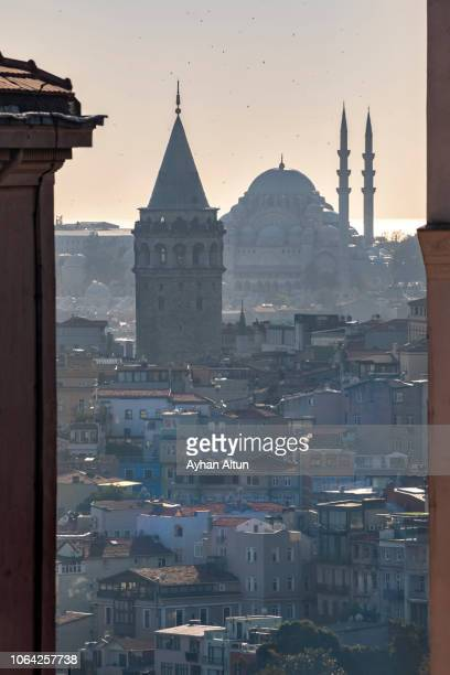 the galata tower and the suleymaniye mosque in istanbul,turkey - istanbul province stock photos and pictures