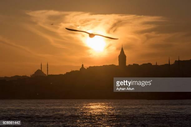 The Galata Tower at sunset,Beyoglu District of Istanbul,Turkey