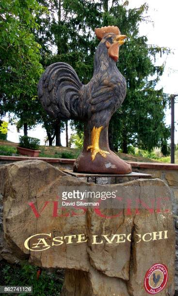 The Gallo Nero or Black Cockerel the symbol of Chianti Classico red wine since the 1920's is seen at the Borgo Castelvecch winery on July 25 2015 in...