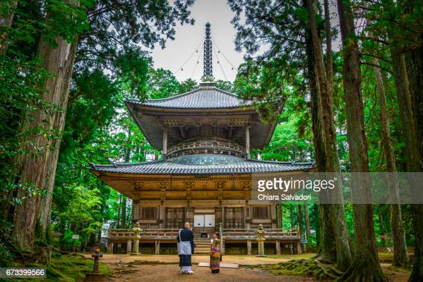the garan on mount kōya, japan - koyasan stock-fotos und bilder