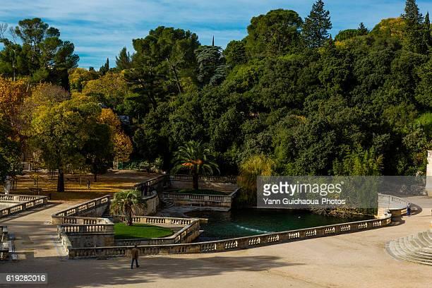the garden, jardin de la fontaine, nimes, gard, france - languedoc rousillon stock pictures, royalty-free photos & images