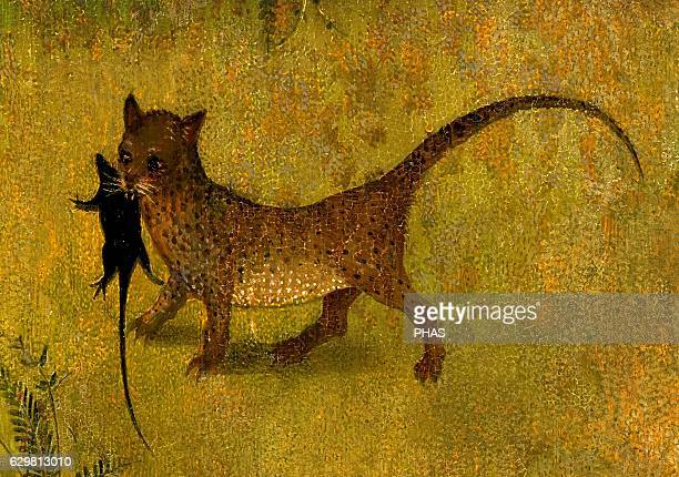 The Garden of Earthly Delights 15001505 by Hieronymus Bosch Detail of a cat with a mouse in his mouth