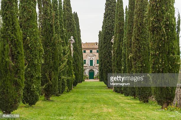 The garden of Villa Cetinale