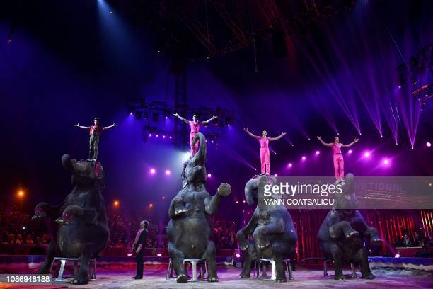 The Gartner's training elephants family performs during the gala of the 43th MonteCarlo International Circus Festival in Monaco on January 222019 The...