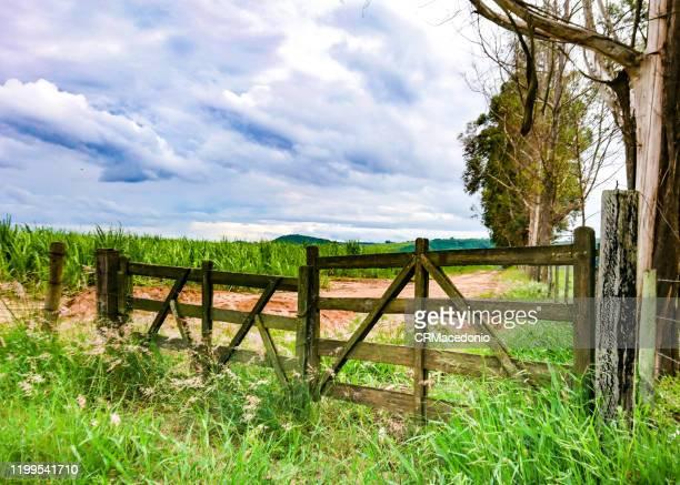 the gate is closed, guarding the farm's crops and beauties. - crmacedonio bildbanksfoton och bilder