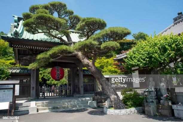 la porta del tempio hase di kamakura, giappone - guanyin bodhisattva foto e immagini stock