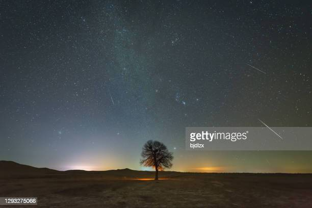 the geminid meteor shower - geminid meteor shower stock pictures, royalty-free photos & images