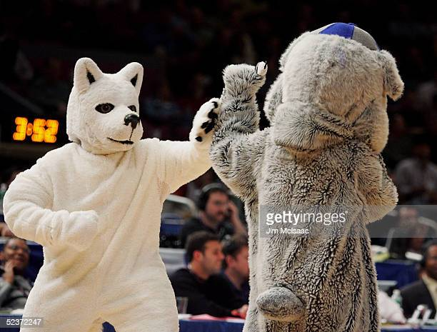 The Georgetown Hoyas mascot and the Connecticut Huskies mascot pretend to fight during a game at the quaterfinal round of the Big East Men's...