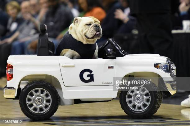 The Georgetown Hoyas mascot Jack the Bulldog drives his car during a college basketball game against the Creighton Bluejays at the Capital One Arena...