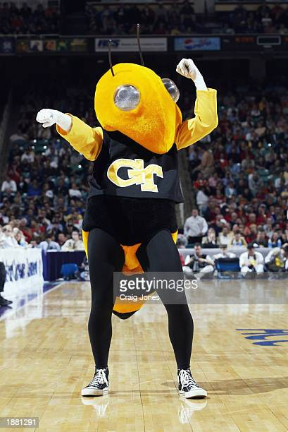 The Georgia Tech Yellowjacket mascot cheers on court during the quarter final game of the ACC Tournament against North Carolina State on March 14...