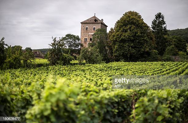 The GevreyChambertin castle is pictured on August 2012 in GevreyChambertin Burgundy eastern France The 12thcentury chateau was sold earlier this year...