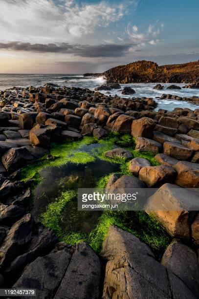 the giant's causeway and causeway coast world heritage site by unesco - volcanic terrain stock pictures, royalty-free photos & images