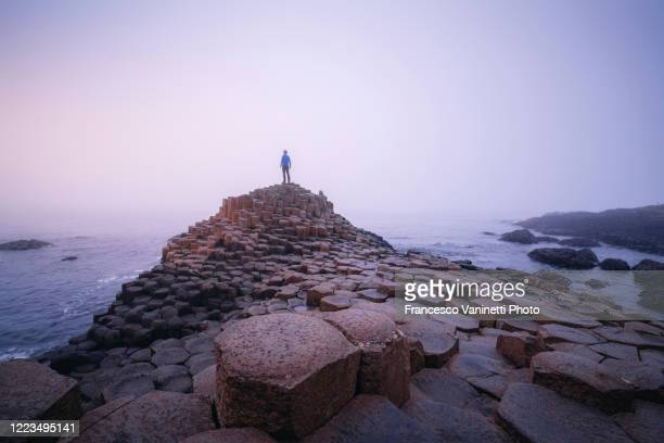 the giant's causeway, northern ireland. - giant's causeway stock pictures, royalty-free photos & images