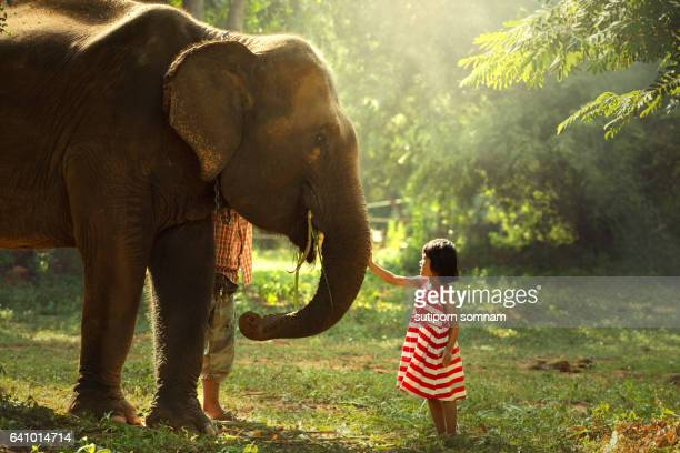 The girl was playing with the elephants