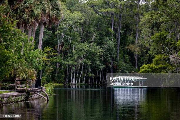 The glass bottom boat tour is a popular attraction at Silver Springs State Park in Florida