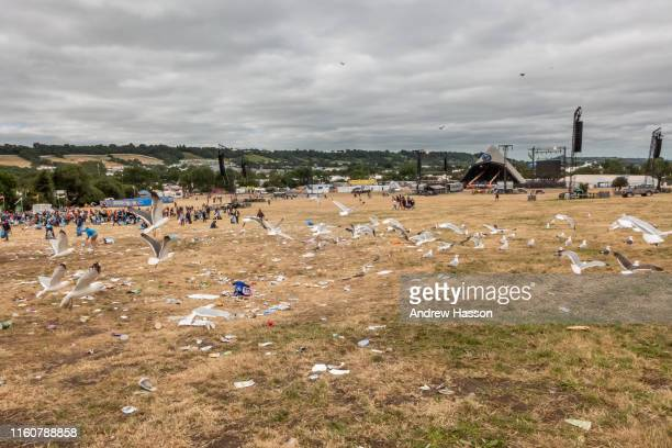The Glastonbury Festival of Contemporary Performing Arts on July 1, 2019 in Glastonbury, England.
