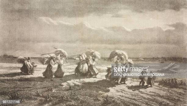 The gleaners in Chambaudoin, the wheat harvest, by Edmond Hedouin , lithograph by Charles Kreutzberger , illustration from Le Musee Francais, n 50,...