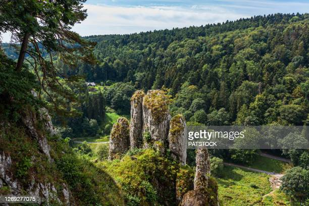 the glove rock (rekawica or biala reka) in ojcow national park. - poland stock pictures, royalty-free photos & images