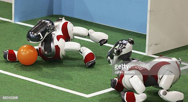 The Goalkeeper of Sony's fourlegged Aibo robots team practices its saving skills prior to a game during the RoboCup 2005 on July 15 2005 in Osaka...