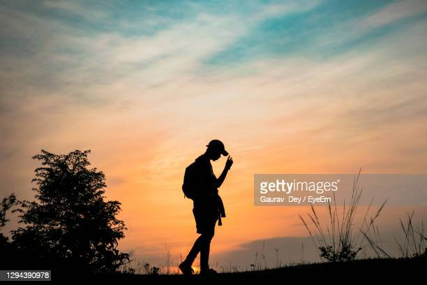 the golden hour - golden hour stock pictures, royalty-free photos & images