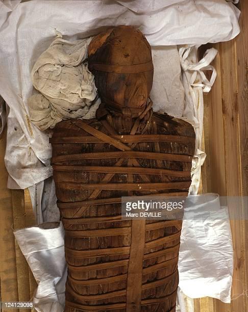 The golden mummies of oasis In El Bahariya Egypt In June 1999