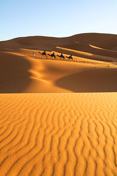 The Golden Sahara Desert