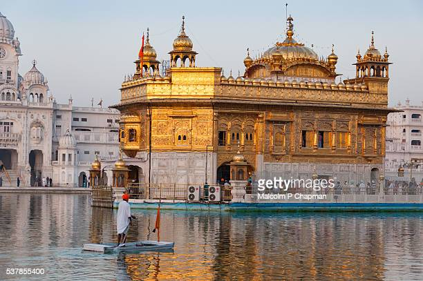 the golden temple, amritsar, india at sunrise - golden temple india stock pictures, royalty-free photos & images